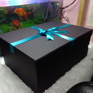Customized Cardboard Gift Boxes for Clothes